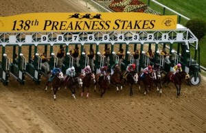 BALTIMORE, MD - MAY 18:  Horses race out of the starters gate down the frontstretch duirng the first race prior to the 138th running of the Preakness Stakes at Pimlico Race Course on May 18, 2013 in Baltimore, Maryland.  (Photo by Patrick Smith/Getty Images)