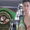 Juara WBC Vietnam Tran Van Thao Akan Betarung dengan Petinju asal Filipina